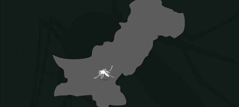 رواں برس مصدقہ ڈینگی کیسز کی تعداد 7471 ہو گئی، اسلام آباد میں وبائی صورت حال