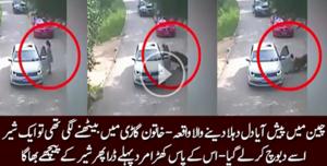 چین میں دل دہلانے والا واقعہ پیش آیا ایک لڑکی کو کار سے اترتے ہی شیر نے کیسے دبوچ لیا دیکھیں ویڈیو میں ...