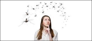 بدلتے ہوئے موسم میں مچھروں سے حفاظت کریں