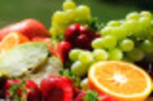 ترشاوہ پھلوں کی پیوند کاری اپریل تک مکمل کی جائے